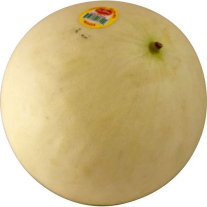 Picture of Cantelope 哈密瓜 约5磅