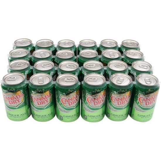 Picture of Canada Dry 12 Oz Ginger Ale