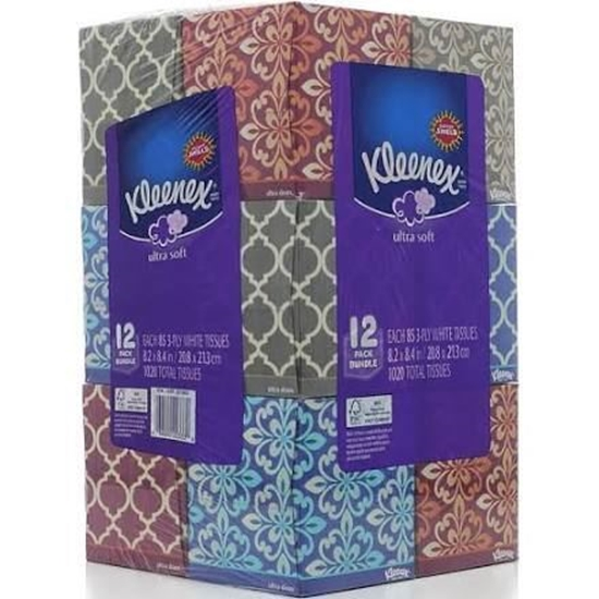 Picture of Kleenex Facial Tissue Upright, 12-Pack, 85-Sheets