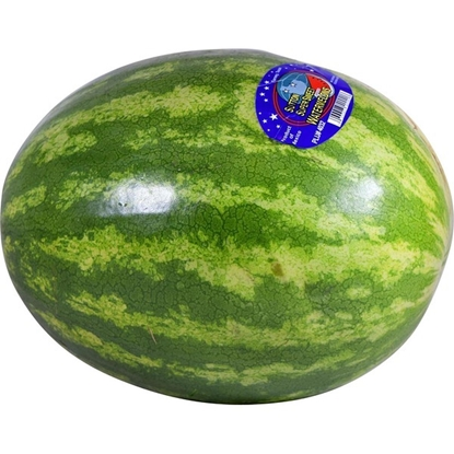 Picture of Watermelons Unlimited Watermelon有籽西瓜